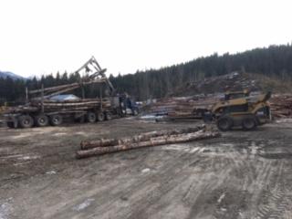MWC Revelstoke Firewood